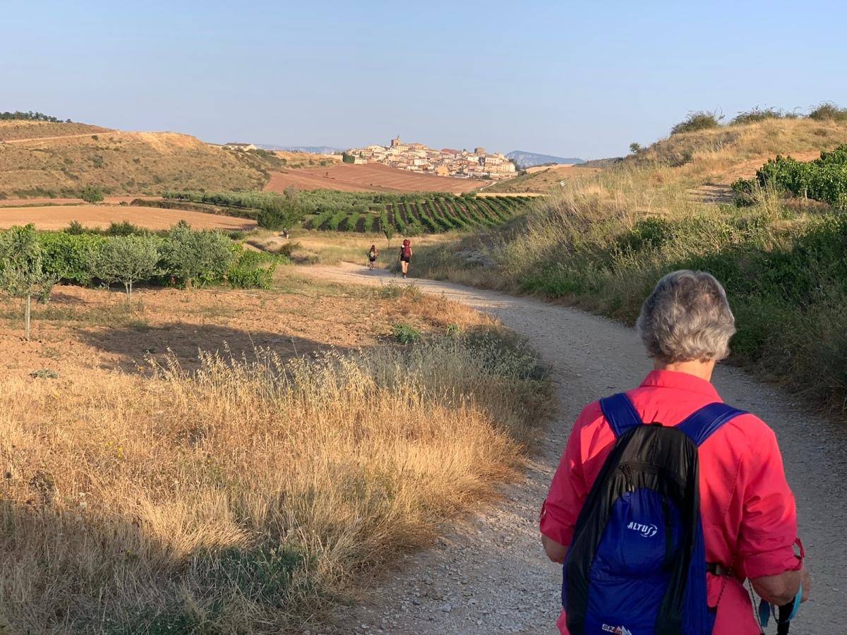 Day 8 – Puente la Reina toLorca